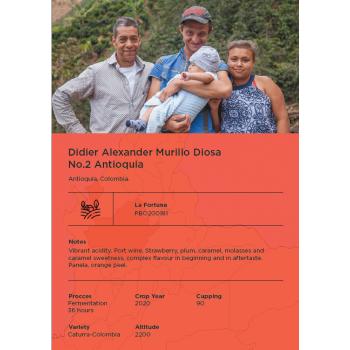5KG Cauca Colombia Aura Noelba Petevie Finscue / Green Coffee / Home Roaster